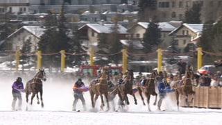 Video «Schweizer Boden in 3-D, Eis-Messung in St. Moritz, Skikjöring» abspielen