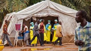 MSF: Ebola-Epidemie dauert noch mindestens sechs Monate