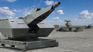 Bundesrat unterstützt Waffenhersteller
