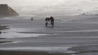 Dem Küstenstreifen droht der Zusammenbruch