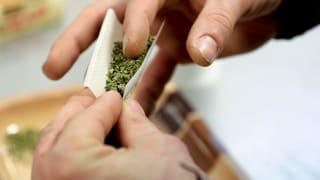Cannabis-Vereine: Eine Genfer Idee stösst auf Interesse