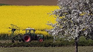 Kaum Kritik aus dem Ständerat an der Agrarpolitik