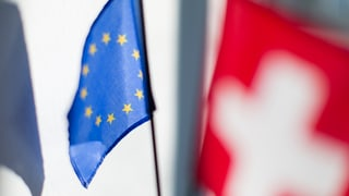 Nicht nur aus Brüssel hagelt es Kritik am Bundesrat. In der Schweiz gehen die Parteien mit der Landesregierung hart ins Gericht.