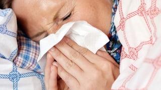 L'epidemia da grippa è arrivada