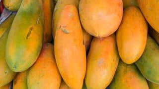 Papayas aus Wolhusen