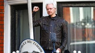 Julian Assange verlangt Wiedergutmachung