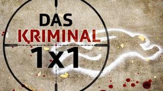 Das Kriminal 1x1
