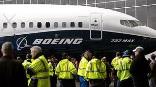 «Die Flugverbote sind sachlich nicht gerechtfertigt»