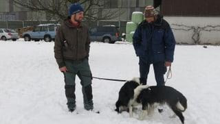 Hundekurse sind auch für Bauern und ihre Vierbeiner Pflicht