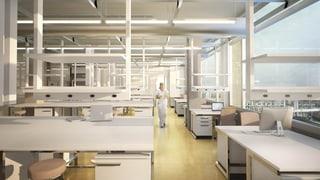 Ein Zeichen gegen Tierversuche oder Investition in die Forschung?