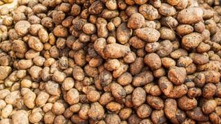Kartoffellieferung sorgt für Angst in Spreitenbach