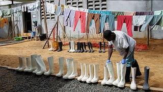 Wird Ebola in diesem Jahr besiegt?