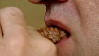 Fotos von Essen verderben den Appetit