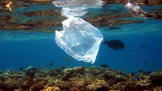 EU plant Umweltsteuer auf Plastiktaschen