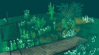 Das Fenster zum grünen Hof – die musikalische Webcam
