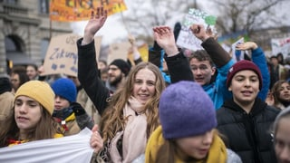 Jungparteien profitieren von der Klimabewegung