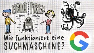 Video «Frag Fred: Wie funktioniert eine Suchmaschine? (1/6)» abspielen