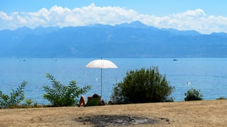 Kein Regen in Sicht: Trocknet die Schweiz aus?