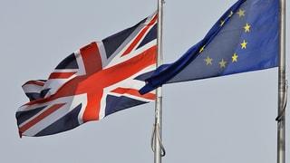 Schweizer Optimismus: Dank Brexit kommt Einigung mit EU