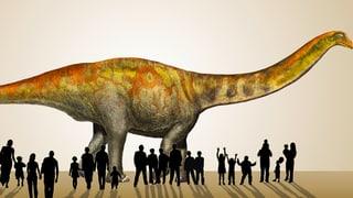 Grosser Auftritt für Dino «MaX»