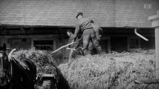 «Vor 50 Jahren»: Das grosse Bauernsterben