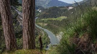 Sagogn: In project d'agroturissem en la Ruinaulta