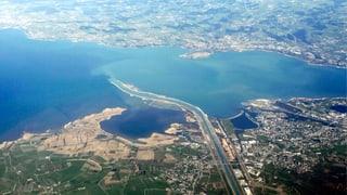 Klimawandel heizt dem Bodensee ein