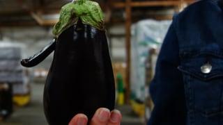 Zweite Chance für Obst und Gemüse