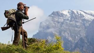 Bündner Jäger schiessen zu wenig Hirsche