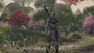 Review: «Elder Scrolls Online»