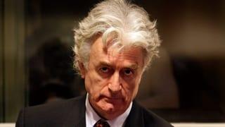 Lebenslange Haft für Serbenführer Karadzic