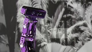 Dabei sein, wenn Roboter sprechen lernen