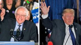 Vorwahlen in New Hampshire: Sanders und Trump triumphieren