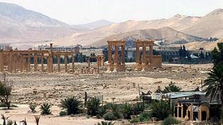 Syrische Regimetruppen rücken auf Palmyra vor