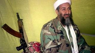 Kollektives Versagen bei der Jagd nach Bin Laden