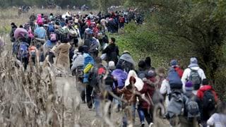 Flüchtlingsansturm bricht immer neue Rekorde