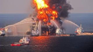 Noch fünf Jahre nach der Ölpest untersuchen Biologen die Folgen vor Ort
