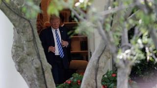 Trump könnte zu viel für zu wenig anbieten