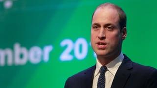 Prinz William: «Unsere schlimmsten Befürchtungen bestätigen sich»