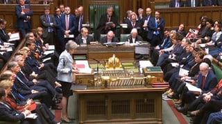Britisches Parlament debattiert über Alternativen