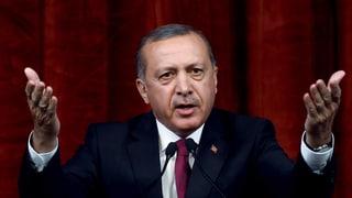 Erdogan vul dapli controlla