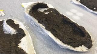 5000 Jahre alte «Espadrilles» im Greifensee gefunden