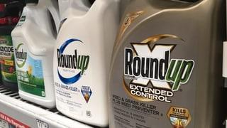 Rückschlag für Bayer in Glyphosat-Prozess