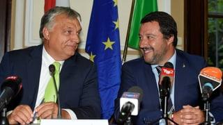 Eine Allianz der Migrationsgegner