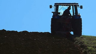 Agrarbericht: Ist bald Feierabend für unsere Böden?