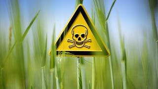 Wie gefährlich sind die Rückstände in unserem Essen?