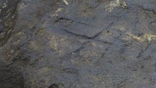 Neu entdeckt: Neandertaler machten Kunst