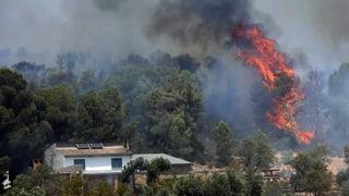 Waldbrände, mehr Notfälle und Gleisschäden bei der SBB
