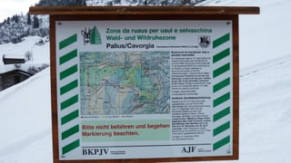 Zonas da ruaus per las selvaschinas