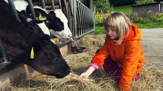 Wie tierischer Staub vor Allergien schützt